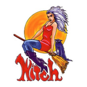 Witch Decorative Sticker Decal By Nancy Kendall