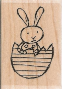 Bunny in Egg Wood Mounted Rubber Stamp