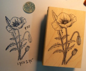 Poppy flowers rubber stamp P35