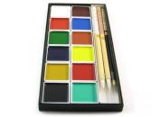 Japanese Ink Painting Brush Set - 12 Colours & 3 Brushes