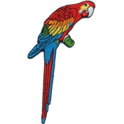 """"""" Parrot """" Iron On Patch"""