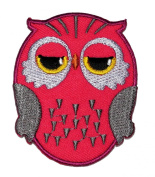 DIY Cute Owl Cartoon Applique Embroidered Sew Iron on Patch