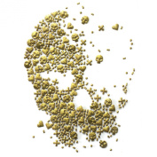 Rhinestone Iron on Transfer Hot Fix Motif Crystal Fashion Design Skull Gold Star 3 Sheets 6.1*21cm