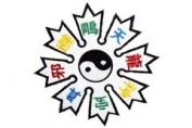 Yin Yang Star Patch #1120