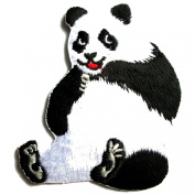 Funny Panda Iron on Patches for Kids