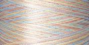 Rainbows Thread 500 Yards-Seashell