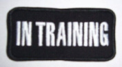 In Training 2 x 4 Heavy Patch