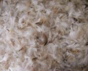 Bulk Goose Down Pillow Feathers - 10/90 Natural - lb