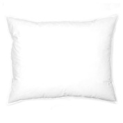 60cm x 60cm Indoor/Outdoor Poly Fill Pillow Form By The Each