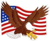 Eagle and American Flag Back Patch
