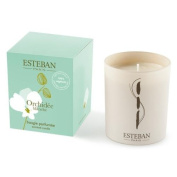 Esteban Orchidee Blanche Scented Candle 200ml