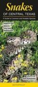 Snakes of Central Texas