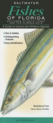 Saltwater Fishes of Florida-Southern Atlantic Coast & the Florida Keys  : A Guide to Inshore & Offshore Species