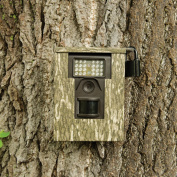 Mossy Oak Graphics 14005-BL Bottomland Camera Lock-Box Skin