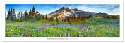 Award Winning Landscape Panoramic Art Print Poster