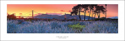 San Francisco Golden Gate Bridge Sunset At Crissy Field Panoramic (Panorama) Art Print Poster