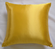 Creative Colourful Shiny Satin Euro Shams / Pillow Case, 24 By 24