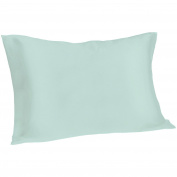 Spasilk 100% Pure Silk Pillowcase for Facial Beauty and Hair Health, Standard/Queen, Aqua
