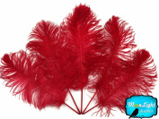 0.2kg Red Ostrich Feathers Wholesale