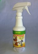 """MisterMax STAIN REMOVER """"PINT"""""""