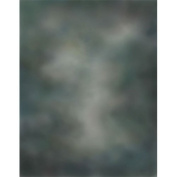 Printed Photography Background grey old masters Titanium Cloth TC2520 Backdrop Better Then Muslin or Canvas