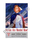 US Army Nurse Corps - World War Two - 8x10 Glossy Photo
