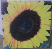 Sunflower Canvas Picture for Wall - 28cm x 28cm