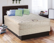 Tomorrow's Dream Inner Spring Eurotop (Pillow Top) Queen Size Mattress and Box Spring Set