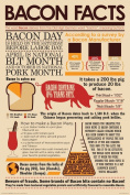 NMR 241089 Bacon Facts Decorative Poster