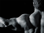 MP PHOTOGRAPHY COMPOSITION MALE MUSCLE ARM BACK BODYBUILDING DEFINED TONED 46cm x 60cm ART POSTER PRINT PICTURE LV6098
