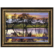 Carpentree From The Rising of The Sun Framed Art