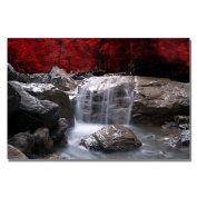 Trademark Fine Art Red Vison by Philippe Sainte-Laudy Canvas Wall Art