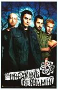 BREAKING BENJAMIN - Music Poster - 22 x 34