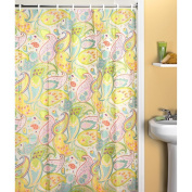 Cool Paisley Shower Curtain
