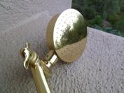 Aussie Rain Shower Head with 23cm Extension - Titanium Gold