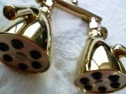 Dual Giessdorf 6 Jet Shower Heads - Titanium Gold