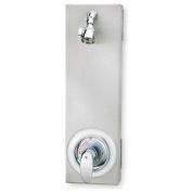 Wall Shower, Individual Pivoting, 2 GPM