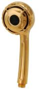 Handheld Shower, Polish Brass Finish - Spray Sensation