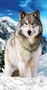 Wolf Towel Wildlife Endanger Alaska on the Snow Wonder Beach Towel