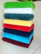 Beach Towels Size 80cm x 160cm Terry Velour Large and Heavy 7.3kg/Dz 100% Cotton