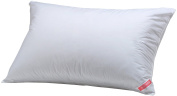 Aller-Ease 100% Cotton Allergy Pillow, Standard/Queen
