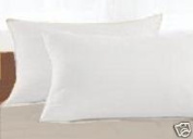 100% Organic Cotton Covered Wool Filled Pillow