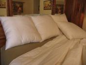 Bio Sleep Concept Organic Wool Medium Firmness Pillow