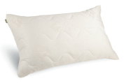 Natura World Aloe Infused Pillow