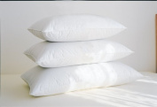 Firm Down Surround Pillow