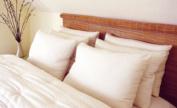 "Holy Lamb Organics Bed Pillow King - ""Regular Fill"""