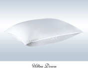 Ultra Firm Hungarian White Goose Down Pillow 650 Fill Power, Ultra Firm Down Pillow - By Comfort Bedding