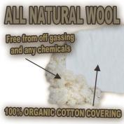 Organic Travel Pillow - Wool