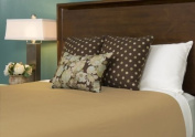 Reversible Rayon Duvet Cover - Full Size (Champagne / Ivory)