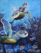 Queen Size Sea Turtles Soft Korean Mink Blanket 200cm x 240cm